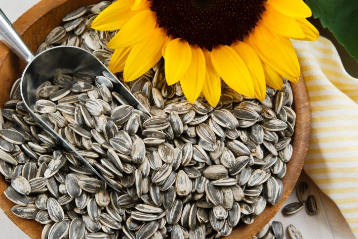 """Seminţele de floarea-soarelui. """"Bomboanele agricole"""" combat nicotina."""