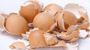Motive pentru care nu ar trebui să arunci cojile de ou, mai ales daca ai probleme cu tiroida, colesterolul sau ulcerul