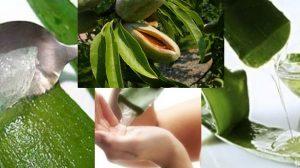 Remedii naturale pentru eczeme