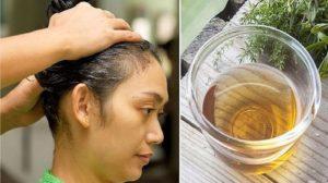 Sampon natural excelent pentru regenerarea și accelerarea creșterii părului, da  stralucire si volum