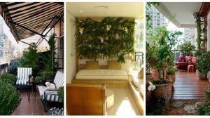 Gradina din balcon – idei practice si pline de culoare de amenajari cu plante si flori