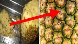 După ce vei citi asta, nu vei mai arunca niciodată coaja de la ananas! Benefica pentru fertilitate! Previne aparitia cataractei, are proprietati anticancerigene