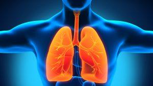 Condimentul care elimină mucusul din plămâni