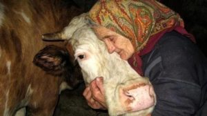 Bunicii nu mor niciodată, ei doar devin invizibili. Toți trebuie să citească această poveste înduioșătoare