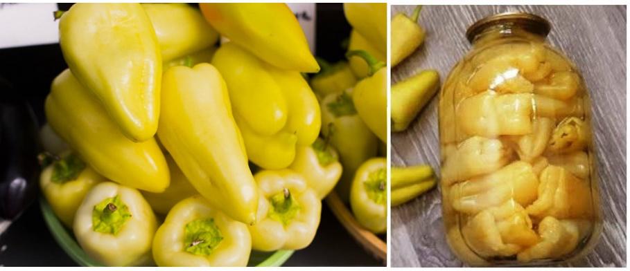 Ardei gras la borcan – o metodă simplă pentru conservarea ardeilor