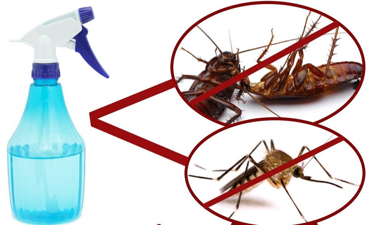 Cea mai bună soluție împotriva țânțarilor. Vestea bună? Se poate aplica și pe piele