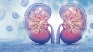 Rețeta băbească pentru curățarea rinichilor. Elimină nisipul și ajută la dizolvarea pietrelor la rinichi