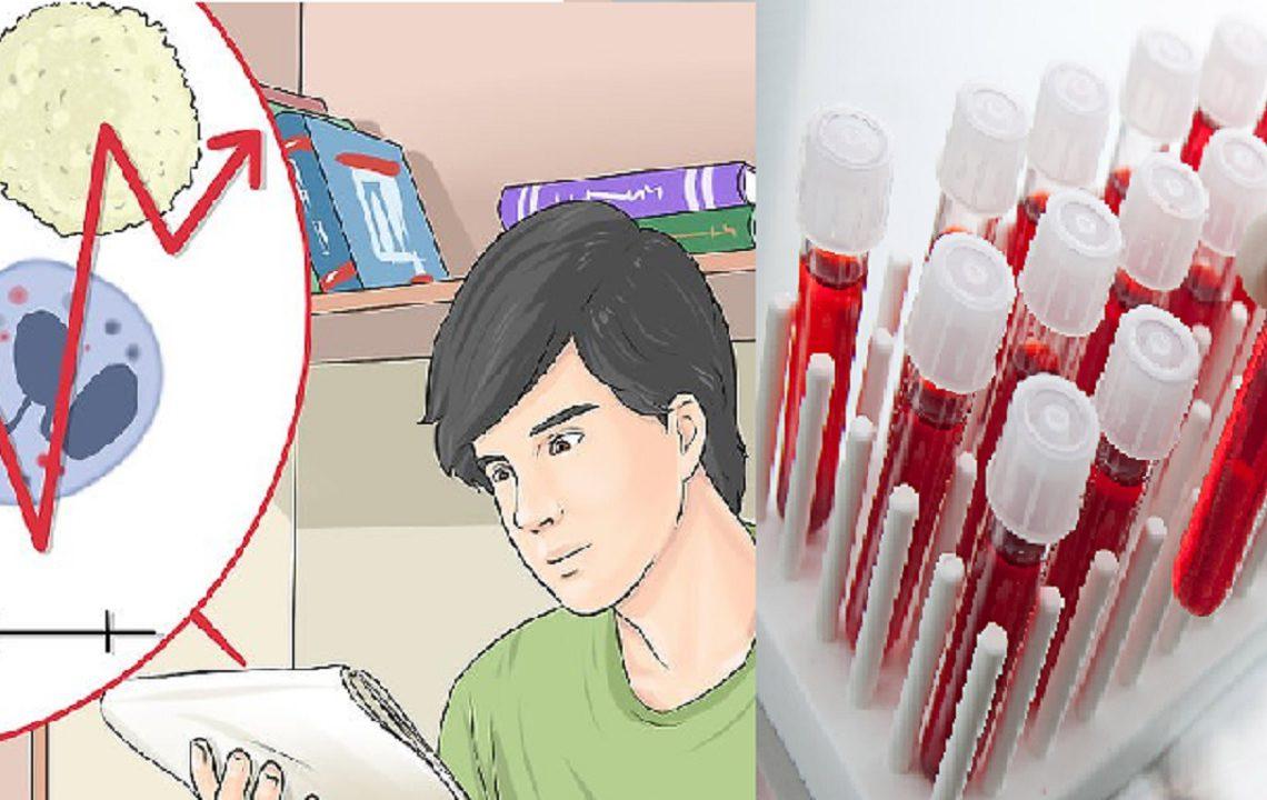 Analizele de sânge, pe înțelesul tău. Ce înseamnă termenii de pe foaia medicală primită după recoltarea de sânge