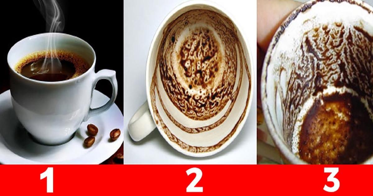 Alege una din cafele și află-ți viața. Despre tine se știe ABSOLUT totul!