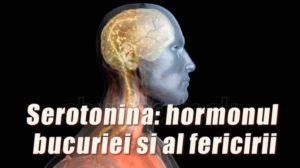 Cum să completați lipsa de serotonină: hormonul bucuriei și al fericirii