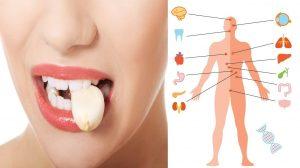 Cureți un cățel de usturoi și îl ții în gură 30 de minute, fără să-l mesteci. Este bine să faci asta