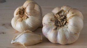 Plantarea de toamnă a căpățânelor întregi de usturoi – o metodă inedită!