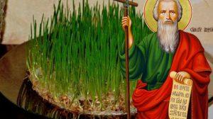 Când si cum se pune grâu la încolţit pentru Sfântul Andrei. Invata cum sa-l ingrijesti corect