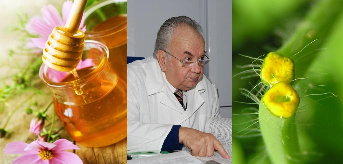 Leac pentru ciroza hepatica – recomandat de prof. dr. Constantin Pârvu