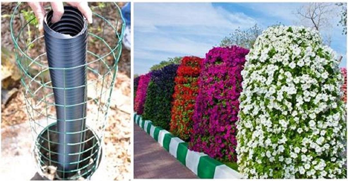 Secretul minunatului stâlp cu flori: cum să construiți singuri o grădină verticală!