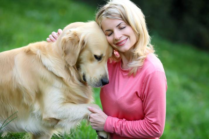 Câinele este singura ființă care te iubește mai mult decât se iubește pe sine!