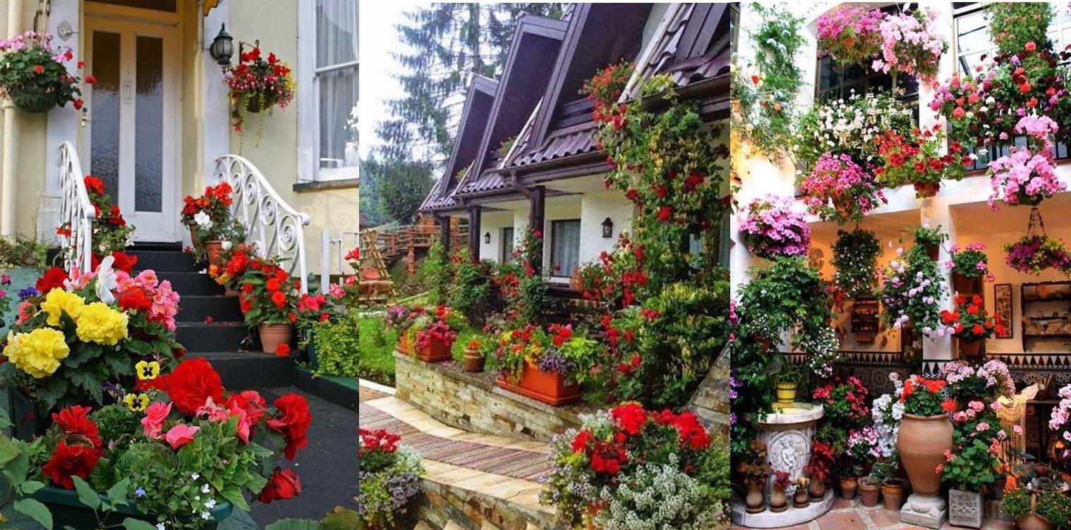 Idei fascinante de aranjare a florilor pentru a crea un mic paradis in fata casei tale