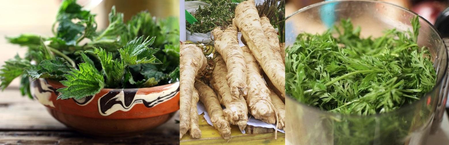 Frunze de morcov, rădăcină de hrean, urzică – plante din grădină care vindecă toate bolile